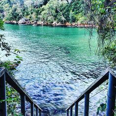 Found the prettiest of secret swimming spots this weekend. Come back summer!!! #hiking #weekend #ozoutdoors #outdoorlife #outsideculture #travelfreedom #adventure #sydney #australia #xploresydney #ilovesydney #girlswhohike #visitnsw #nature #wanderaustralia #summer #pioneerwalks #hiker_mentality #hiking_official #exploringaustralia #canon #photography