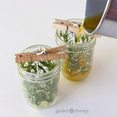 Make your own pressed herb candles using herbs harvested from your very own garden. Pot Mason Diy, Mason Jar Gifts, Mason Jar Candles, Diy Candles, Homemade Christmas Gifts, Christmas Diy, Holiday Gifts, Creation Bougie, Insect Repellent Plants