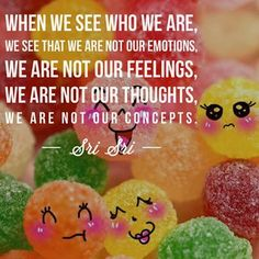 WHEN WE SEE WHO WE ARE, WE SEE THAT WE ARE NOT OUR EMOTIONS, WE ARE NOT OUR FEELINGS, WE ARE NOT OUR THOUGHTS, WE ARE NOT OUR CONCEPTS - SRI SRI