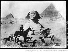 Egypte [deux cavaliers avec une meute de chiens au pied du Sphinx et des pyramides] : [photographie de presse] / [Agence Rol] - 1