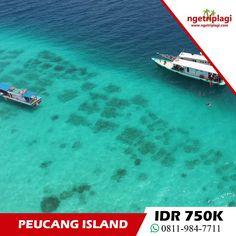 Open Trip Wisata Pulau Peucang. Kami menyediakan paket wisata pulau peucang yang murah dan terjangkau bagi backpacker. Silahkan cek segera tanggalnya.