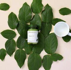 Tegreen Nu Skin, Green Tea Capsules, Effects Of Green Tea, Green Tea Drinks, Antioxidant Supplements, Green Tea Benefits, Cellular Level, Green Tea Extract, Medical Prescription