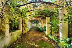 Sardenha_Italy                                                                                                                                                                                 Mais