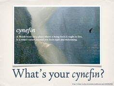 writing prompts: Where's your cynefin? Unique Words, Beautiful Words, Cool Words, Welsh Words, My Dictionary, Writing Promts, Story Prompts, Favorite Words, Journal Prompts