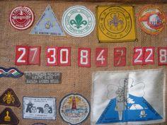 insignias guias