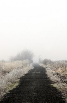 "4himglory: "" The Easy Way by russell.tomlin on Flickr. """