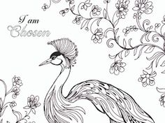 Birds - Google Drive Fairy Coloring, Adult Coloring Pages, Colouring, Bible Verse Coloring Page, Addams Family Characters, Printable Bible Verses, Birds 2, Kids Church, Google Drive