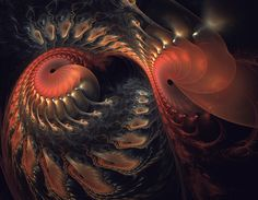 The dance of the Nautilus by eReSaW.deviantart.com