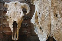 Despite being from the southwest, I've never been drawn to animal skulls. However, I'm captivated by Jason Borders's lace-like carvings.
