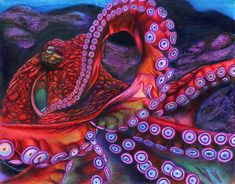 Giant Pacific Octopus By Erick Villegas by California Coastal Commission – Octopus Tattoo Octopus Drawing, Octopus Painting, Octopus Wall Art, Fish Art, Octopus Legs, Red Octopus, Octopus Squid, Octopus Tentacles, Octopus Tattoo Sleeve