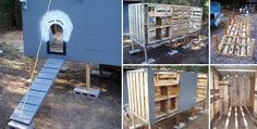 Here's a really nice (and cheap) chicken house made out of 7 unused wood pallets. It uses 3 wood pallets bolted together to form the floor structure, and another 4 to form most of the walls. In addition, plywood is then used to finish & enclose the coop. The entire coop is raised off the groun…