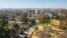 The hottest suburbs in Sandton and Randburg Great Schools, Local Parks, Private Property, Tree Line, Dog Walking, The Locals, Beautiful Homes, The Neighbourhood, Dolores Park