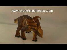 Wild Safari Dinosaurs Pachyrhinosaurus Dinosaur Model Review http://youtu.be/ARMtxCPYouU