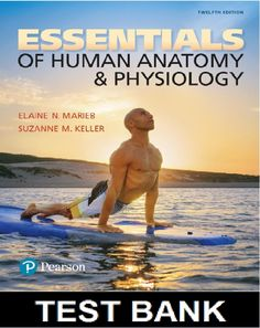 Essentials of Human Anatomy and Physiology Edition Marieb Test Bank, Study Guide, Solution Manual Universal Studies, Anatomy And Physiology Book, Universal Life Insurance, College Test, Medicinal Chemistry, Microbiology, Injury Prevention, Nursing Students, Essentials