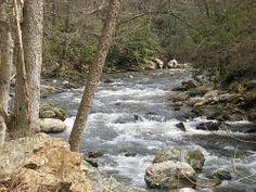 Trail Days Damascus VA | The Virginia Creeper Trail follows this creek out of town.