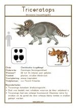 Natuurkaart Dinosauriërs – Triceratops – Best Art images in 2019 Dinosaurs Preschool, Dramatic Play, Projects For Kids, Teaching Kids, Art Images, Activities For Kids, Teddy Bear, Cutest Animals, Funny Animals