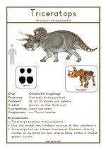 Natuurkaart Dinosauriërs – Triceratops
