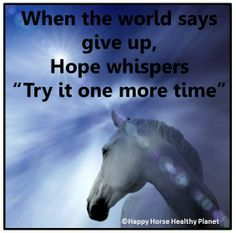 Happy Horse Healthy Planet is dedicated to educating and assisting horse owners in learning methods for earth-friendly horse care.