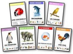 Jeux des 7 familles gratuits à imprimer pour jouer à l'école ou en famille. Retrouvez d'autres jeux éducatifs sur Dessinemoiunehistoire.net