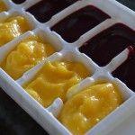 Homemade Kombucha | stupideasypaleo.com