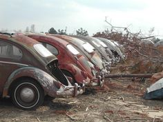 Rusty VW Beetle line up