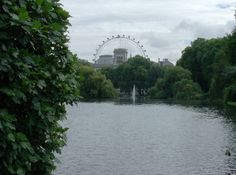 The London Eye through the park. Sept. 2013