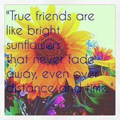 True friends are like bright sunflowers.