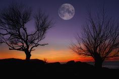 Winter moon. by Tramont_ana on 500px