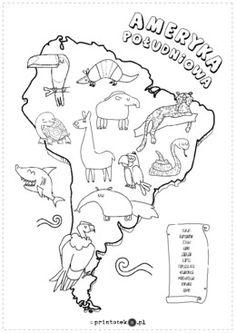 Zwierzęta Ameryki Południowej - Printoteka.pl