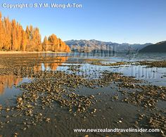 Wanaka in autumn in New Zealand
