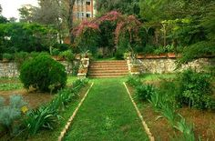 Bari, botanical garden at University.