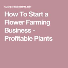How To Start a Flower Farming Business - Profitable Plants