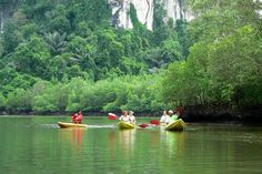 """Here we share some of the best itinerary plans for a 3 night stay, and for everyone from active adventurers to sun and sea junkies. We've even included a plan for a """"free"""" holiday! (no entry fees). Destinations, Krabi, Stay The Night, Thailand, Asia, River, Adventure, How To Plan, Outdoor"""