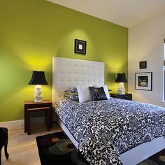 Benjamin Moor dark lime green Wall Design, Pictures, Remodel, Decor and Ideas