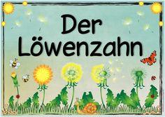 """Ideenreise: Themenplakat """"Der Löwenzahn"""""""