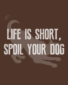 Life is short, spoil your dog 🐶💖   #WeeklyPLAYQuote #dogquotes #dogmoments #dogsarethebest #dogloversfeed #dogslife #dailydogs #wedontdeservedogs #dogsarebetterthanhumans #dogsareloves #dogsarethebest #dogsmakeeverythingbetter Cute Cat Quotes, Dog Quotes Funny, Funny Dogs, Play Quotes, Dog Jokes, Spoil Yourself, Mood, Animal Quotes, Life Is Short