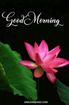 अच्छा सोचिए अच्छा बोलिए और अच्छा कीजिए क्योंकि सब आपके पास लौटकर आता है। 🌻🌻🌻🌻 सुप्रभात