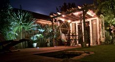 Edison style filament bulbs on festoon lighting in tropical pergola by night (with decking inset LED up lights for palm trees).