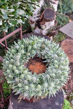 Thistle wreath ~ ZIta Elze - Florist Shop, London - December 2013 - Flowerona