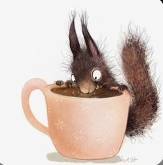 Art And Illustration, Squirrel Illustration, Illustrations And Posters, But First Coffee, Coffee Love, Coffee Coffee, Animal Drawings, Cute Drawings, Squirrel Art