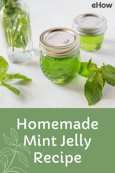 Making mint jelly at home using fresh mint is fun and fairly straight-forward. If you're new to canning, be sure to read the instructions in this post all the way through a few times to avoid any confusion during the process. Home Canning Recipes, Herb Recipes, Jelly Recipes, Jam Recipes, Canning Tips, Cooker Recipes, Recipies, Mint Leaves Recipe, Fresh Mint Leaves