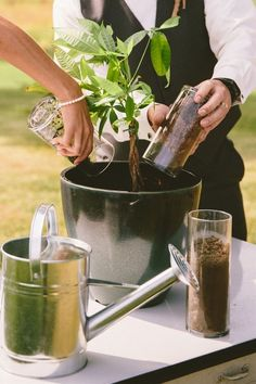 Plant unity ceremony instead of sand