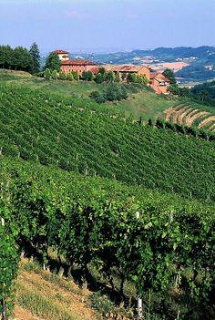 Piemonte - Langhe, Monferrato e Roero nell'Unesco -