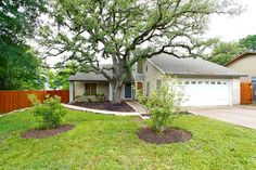 We love this historic 100+ year old oak tree. If you like the outside, you will LOVE the inside.