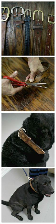 DIY: dog collar from vintage belt. Perfect for huge dogs! The main pet stores don't have collars big enough! http://offtract.com/vintage-belt-dog-collars-diy/?utm_content=buffer5fbb0&utm_medium=social&utm_source=pinterest.com&utm_campaign=buffer#_a5y_p=1759530