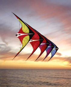 Kite flying at sunset Go Fly A Kite, Kite Flying, Stunt Kite, Kite Designs, Arte Popular, Hot Air Balloon, Balloons, Things To Come, Dreams