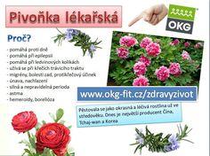 Plants, Epilepsy, Plant, Planting, Planets