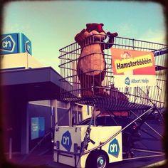 Onze hamster is in onze XL winkelwagen geklommen en straalt voor de Albert Heijn in Harelbeke.