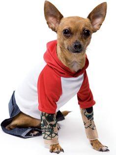 Tattoo Dog Pet Costume Size Medium Brand New.  #DariceCraftsAC #PetProducts