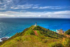 Cape Reinga (Nordinsel)  Fotograf: Dominik Dodenhoff